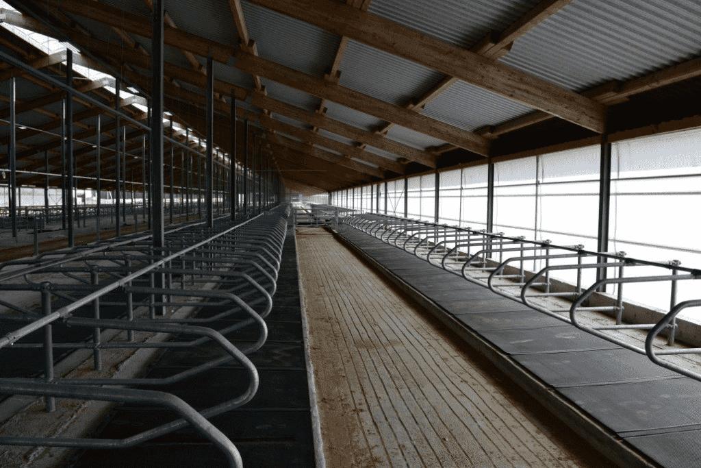 Резиновые маты для коров (КРС)